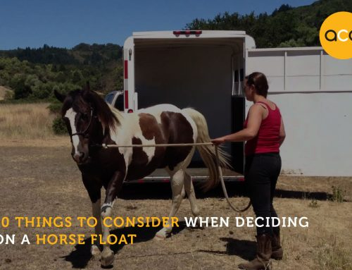 10 things to consider when deciding on a horse float